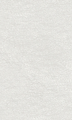 porcelanosa filo blanco 20x33.3