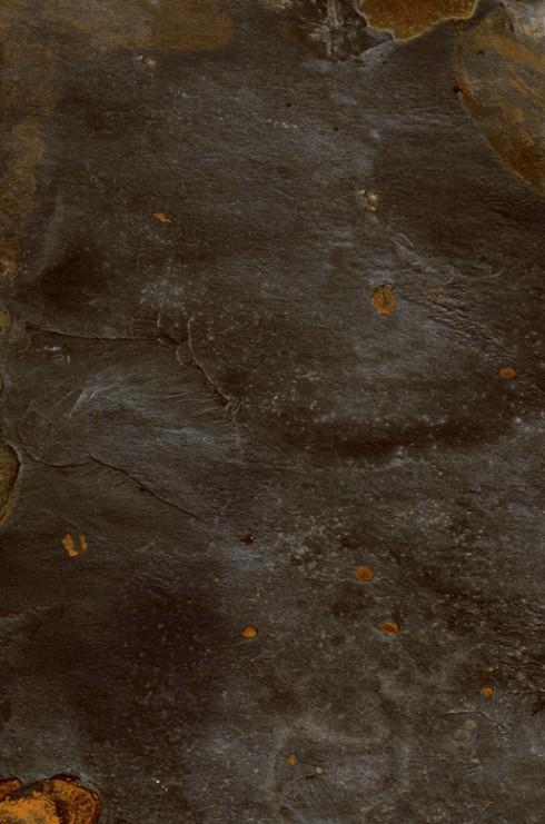 porcelanosa tibet black 43.5x65.9