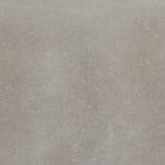 Bluestone Topo 59.6 x 59.6